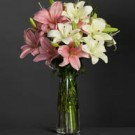 Lillies Arrangement