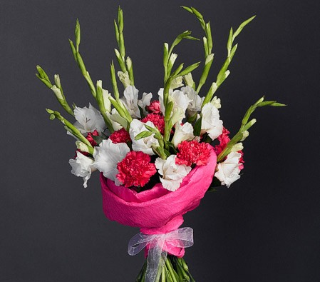 Simple red carnations