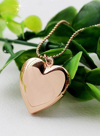 Heart Shaped Proposal Locket