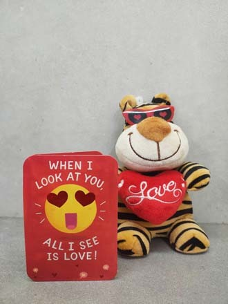 Tiger Love Soft Toy